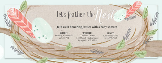 feather, nest, bird's nest, baby, baby shower, feathers,