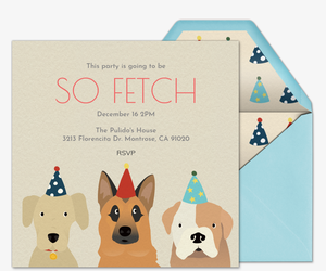 Pet Birthday Hats Invitation